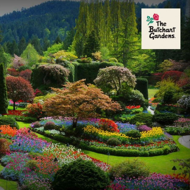 newsletter1-butchartgardens